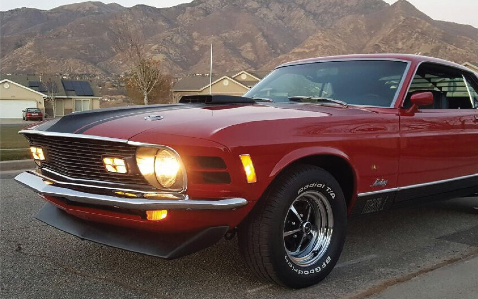 Test-link-image-STANG